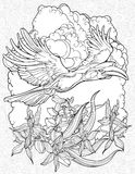 Coloring page with flying hornbill Royalty Free Stock Images