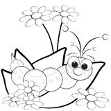 Coloring page - Grub and flowers royalty free stock images
