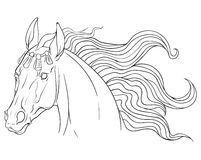 Coloring page with horse Stock Image