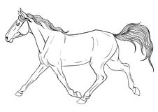 Coloring page with horse Stock Photography
