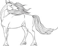 Coloring page with horse Royalty Free Stock Image