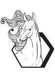 Coloring page with horse portrait Stock Photo