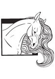 Coloring page with horse portrait Stock Images