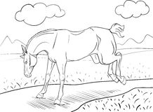 Coloring page with a horse Royalty Free Stock Photos