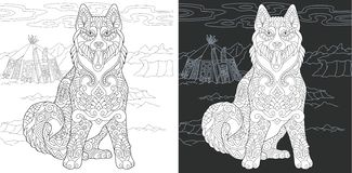 Coloring page with husky dog. Coloring Page. Coloring Book. Colouring picture with Husky Dog drawn in zentangle style. Antistress freehand sketch drawing. Vector vector illustration