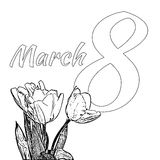 Coloring page for International Happy Women`s Day c with bouquet of tulips and text 8th of March  Stock Photos