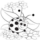 Coloring page - Ladybug and daisy stock photography