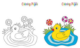 Coloring Page Little Duck Royalty Free Stock Image