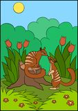 Cartoon animals. Two little cute numbats look at each other. And smile stock illustration