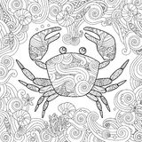 Coloring page. Ornate crab isolated on white background. Stock Image