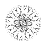 Coloring page with Osteospermum flowers Stock Image