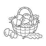 Coloring Page Outline Of  basket of mushrooms. Summer gifts of nature. Coloring book for kids Royalty Free Stock Image