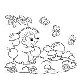 Coloring Page Outline Of cartoon hedgehog with apples and mushrooms in the meadow with butterflies. Coloring book for kids Royalty Free Stock Photos
