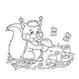 Coloring Page Outline Of cartoon squirrel with mushrooms in the meadow with butterflies. Coloring book for kids Stock Image