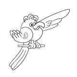 Coloring page outline of funny parrot Royalty Free Stock Photo