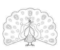 Coloring page outline of funny peafowl Royalty Free Stock Photo