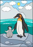 Cartoon birds. Mother penguin stands on the stone with her little cute baby. Penguin vector illustration