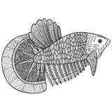 Coloring page with zentangle fish Royalty Free Stock Photo