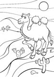 Coloring pages. Animals. Cute camel. Stock Photo