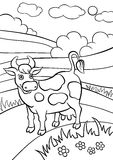 Coloring pages. Animals. Cute cow. Royalty Free Stock Images