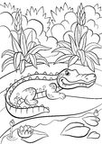Coloring pages. Animals. Little cute alligator. Sits near the pond and smiles Stock Photography