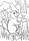 Coloring pages. Animals. Little cute beaver. Royalty Free Stock Photo