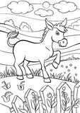 Coloring pages. Animals. Little cute donkey. Coloring pages. Animals. Little cute donkey stands on the field and smiles royalty free illustration