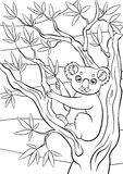 Coloring pages. Animals. Little cute koala. Royalty Free Stock Photos