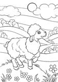 Coloring pages. Animals. Little cute sheep. Royalty Free Stock Images