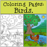 Coloring Pages: Birds. Little cute duck. Stock Images