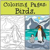 Coloring Pages: Birds. Mother penguin with her cute baby. Coloring Pages: Birds. Mother penguin stands on the stone with her little cute baby penguin stock illustration