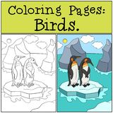 Coloring Pages: Birds. Two little cute penguins hug. Coloring Pages: Birds. Two little cute penguins stand on the ice-floe in the ocean and smile vector illustration