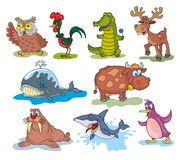 Fun zoo royalty free stock images