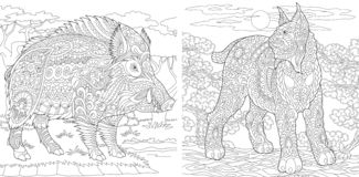 Coloring Pages. Coloring Book for adults. Colouring pictures with wildcat and wild boar. Antistress freehand sketch drawing with. Doodle and zentangle elements stock illustration
