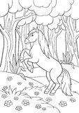 Coloring pages. Farm animals. Beautiful horse. Coloring pages. Farm animals. Beautiful horse in the forest Royalty Free Stock Image