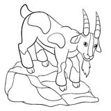 Coloring pages. Farm animals. Cute billy goat. Coloring pages. Farm animals. Cute billy goat stands on the stone and smiles Royalty Free Stock Photo