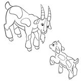 Coloring Pages. Farm Animals. Father Goat Looks At His Goatling. Stock Photo