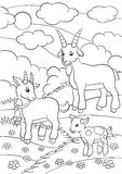 Coloring pages. Farm animals. Goat family. Royalty Free Stock Images