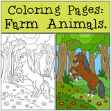 Coloring Pages: Farm Animals. Little cute foal. Coloring Pages: Farm Animals. Beautiful cute horse in the forest Stock Photo