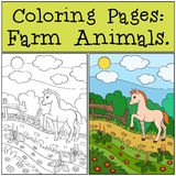 Coloring Pages: Farm Animals. Little cute foal. Coloring Pages: Farm Animals. Little cute foal walks and smiles Royalty Free Stock Photos