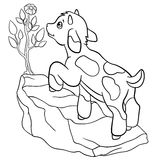 Coloring Pages. Farm Animals. Little Cute Goatling Stock Photography