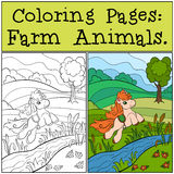 Coloring Pages: Farm Animals. Little cute pony. Royalty Free Stock Photography