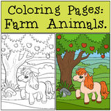 Coloring Pages: Farm Animals. Little cute pony. Royalty Free Stock Image