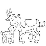 Coloring Pages. Farm Animals. Mother Goat With Her Goatling. Royalty Free Stock Photos
