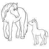 Coloring pages. Farm animals. Mother horse with foal. Coloring pages. Farm animals. Mother horse with her little cute foal Royalty Free Stock Photos