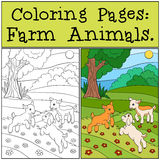 Coloring Pages: Farm Animals. Three little cute baby goats. Coloring Pages: Farm Animals. Three little cute baby goats play on the field Royalty Free Stock Photo