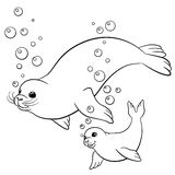 Coloring pages. Mother fur seal with her little cute baby. Coloring pages. Mother fur seal with her little cute baby seal royalty free illustration