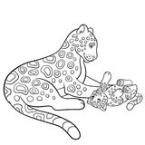 Coloring pages. Mother jaguar with her little cub. Stock Photos
