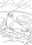 Coloring pages. Mother seal with her little cute baby. Coloring pages. Mother seal with her little cute baby on the ice floe in the ocean stock illustration