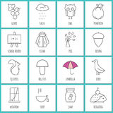 Coloring pages symbols of autumn Stock Photography